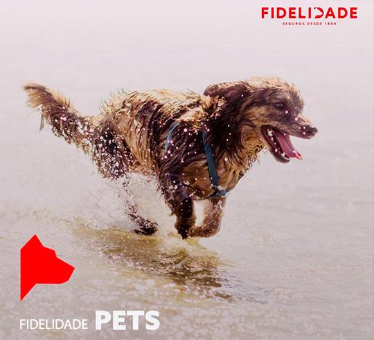 Mediação de seguro animal pets